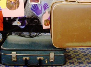 suit-cases-2