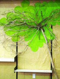 green tree 0